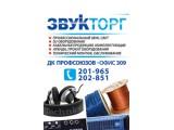 "Логотип Компания ""Звукторг""  ИП Пинюгин А.А."